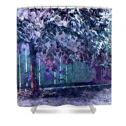 Lost In Reverie Shower Curtain