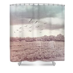 Lost In The Fields Of Time Shower Curtain