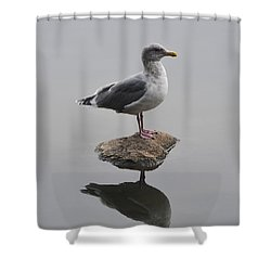 Lost In The Lagoon Shower Curtain