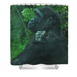 Shower Curtain featuring the photograph Lost In Thought by Richard Bryce and Family