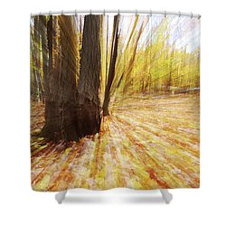 Lost In Time Shower Curtain by Mircea Costina Photography