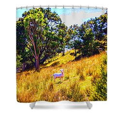 Lost Lamb Shower Curtain
