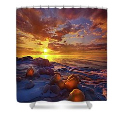 Lost Titles, Forgotten Rhymes Shower Curtain by Phil Koch