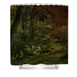 Lost Woods 8140 H_3 Shower Curtain
