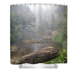Lost World Shower Curtain
