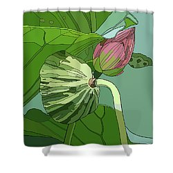Lotus And Bud Shower Curtain