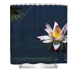 Lotus And Reflection Shower Curtain