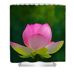 Shower Curtain featuring the photograph Lotus Blossom 842010 by Byron Varvarigos