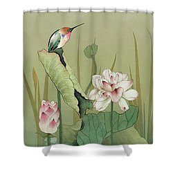 Lotus Flower And Hummingbird Shower Curtain