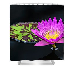 Lotus Flower And Pad Shower Curtain