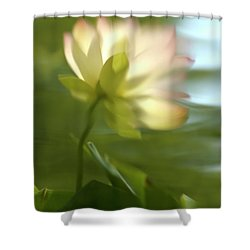 Lotus Reflection Shower Curtain