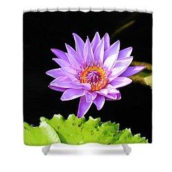 Lotus Splendor Shower Curtain by Deborah Crew-Johnson