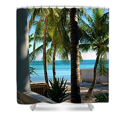 Louie's Backyard Shower Curtain by Susanne Van Hulst