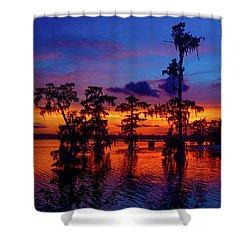 Louisiana Blue Salute Reprise Shower Curtain