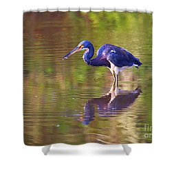 Louisiana Heron Shower Curtain