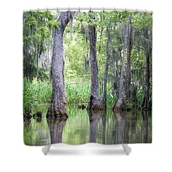 Louisiana Swamp 5 Shower Curtain