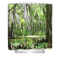 Louisiana Swamp Shower Curtain