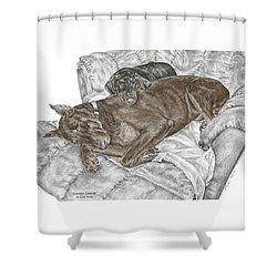 Shower Curtain featuring the drawing Lounge Lizards - Doberman Pinscher Puppy Print Color Tinted by Kelli Swan