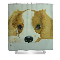 Shower Curtain featuring the painting Lovable Puppy by Norm Starks