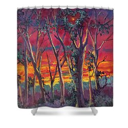 Love And The Evening Star Shower Curtain