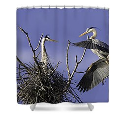 Love At First Sight Shower Curtain by Everet Regal