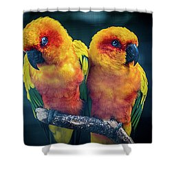 Shower Curtain featuring the photograph Love Birds by Chris Lord