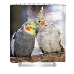 Love Birds Shower Curtain by Stephanie Hayes