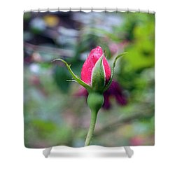 Love Blooming Shower Curtain