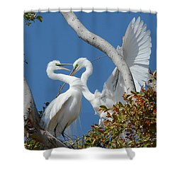 Love Branch Shower Curtain