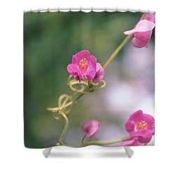Shower Curtain featuring the photograph Love Chain by Megan Dirsa-DuBois