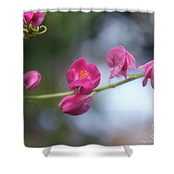 Shower Curtain featuring the photograph Love Chain3 by Megan Dirsa-DuBois