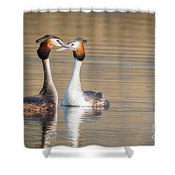 Love Couple Shower Curtain