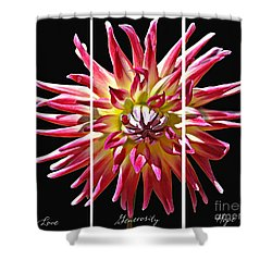 Shower Curtain featuring the photograph Love Generosity Hope by Diane E Berry