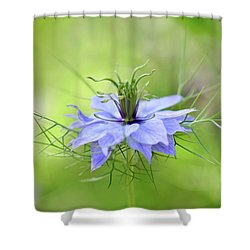 Love-in-a-mist Shower Curtain