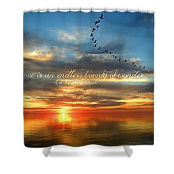 Love Is Endless Wonder Shower Curtain