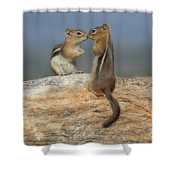 Love Is In The Air Shower Curtain