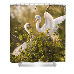 Shower Curtain featuring the photograph Love Is In The Air by Kelly Marquardt