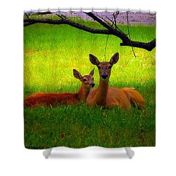 #love It When These Two Are On My Front Shower Curtain