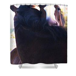 Love Shower Curtain by Linda Shafer