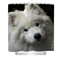 Shower Curtain featuring the photograph Love by Lois Bryan
