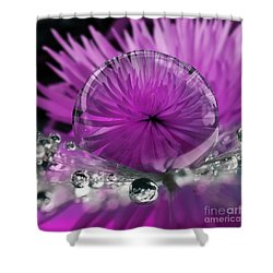 Love Muse Shower Curtain