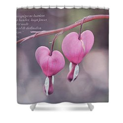 Love Recognizes No Barriers Shower Curtain