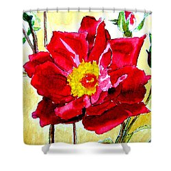 Love Rose Shower Curtain by Ana Maria Edulescu