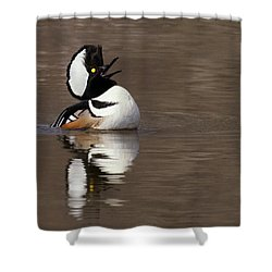 Love Song Shower Curtain