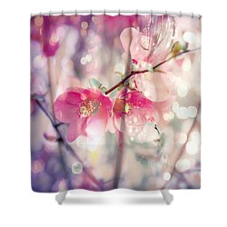 Love Song Shower Curtain by Toni Hopper