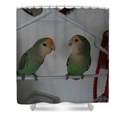 Lovebirds Shower Curtain by Val Oconnor