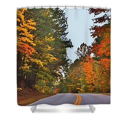 Lovely Autumn Trees Shower Curtain
