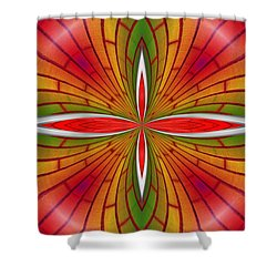 Lovely Geometric  Shower Curtain