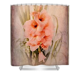 Lovely Gladiolus Shower Curtain