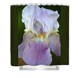 Shower Curtain featuring the photograph Lovely In Lavender by Sheila Brown